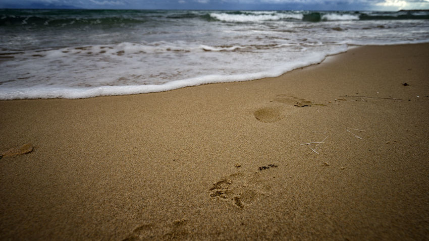 Human and dog Alone Footsteps In The Sand Your Ticket To Europe Beach Beauty In Nature Nature Outdoors Sand Sea
