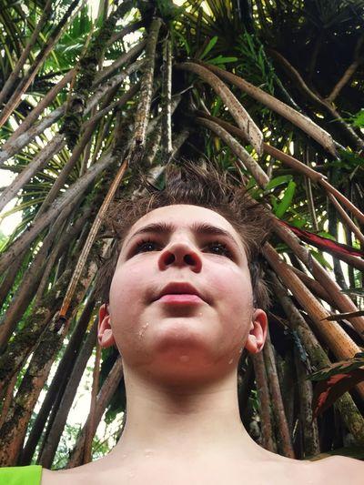 Rethink Things Rain Forest Rain Forest Plants Costa Rica The Portraitist - 2018 EyeEm Awards