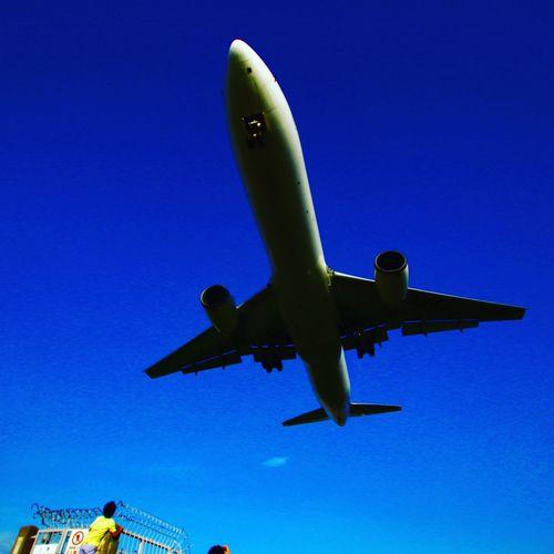 伊丹空港千里川堤防より 飛行機好き 千里川 伊丹空港 飛行場 Airplane Sky Low Angle View Transportation Travel Flying Clear Sky Blue