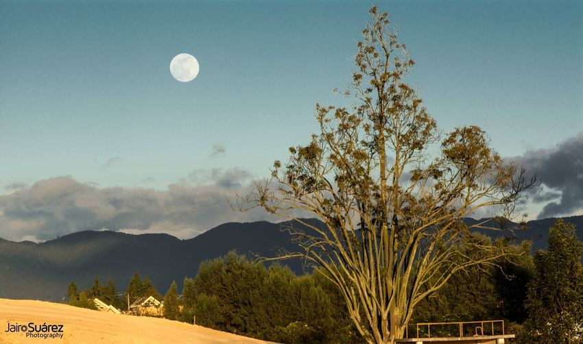 Scenic view of moon in mountains against sky