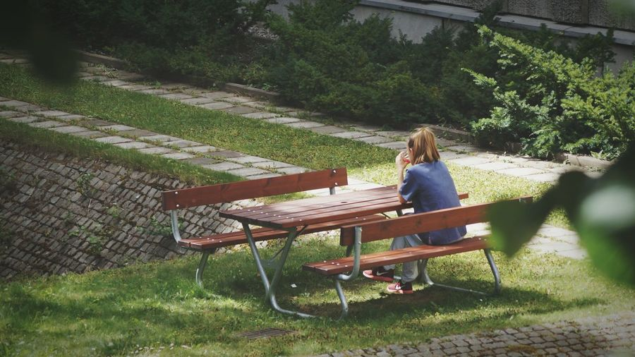 Rear View Of Woman Sitting On Bench In Garden