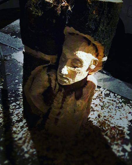 No People Shadow Day Tree Wood Legno Albero Tronco Sculpture Scultura Treecollection Woodwork  Legnolavorato Tronco Cortado Trees Tree Silhouette Wood Art Legnoart Troncofilosofiadivita Tree Trunk Wood - Material Legno Wood Tronco Vivo Sculpture Garden Sculture The Street Photographer - 2017 EyeEm Awards