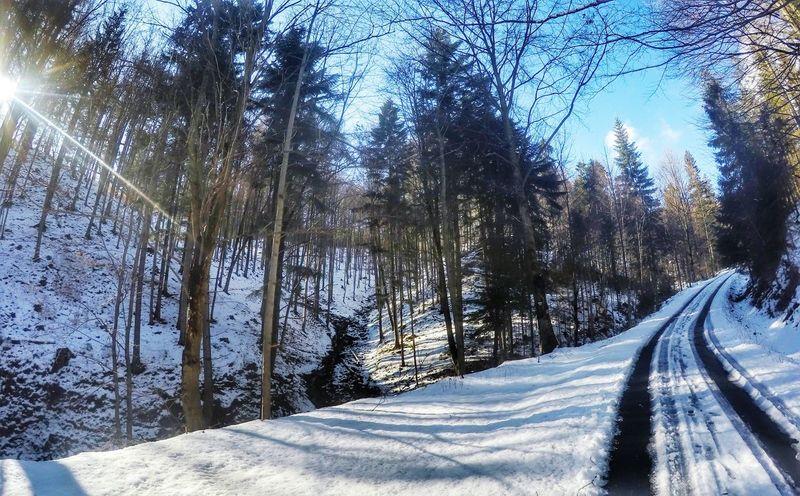 Relaxing MTB Biking Gopro Shots MTB Gopro Goprophotography Beskidżywiecki GoPro Hero 4 Goprohero4 Snow