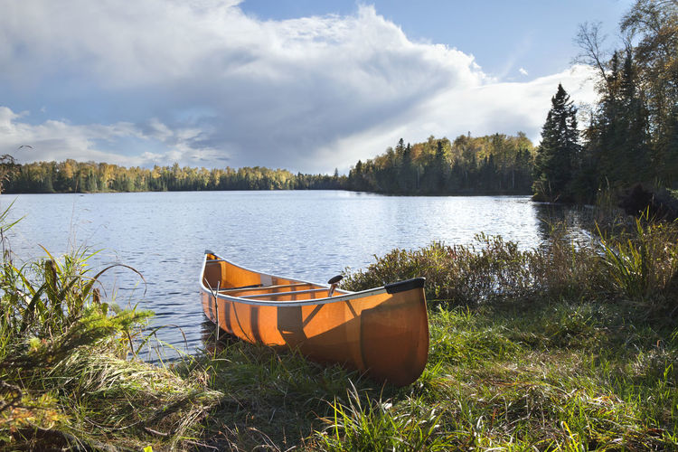 Backlit canoe on the shore of a northern Minnesota lake during autumn Afternoon Canoe Grass Landing Minnesota Sunlight USA Backlit Beauty In Nature Birch Tree Boat Cloud - Sky Forest Lake No People North Orange Color Paddle Pine Tree Shore Sky Tree Water Woods Yellow Color