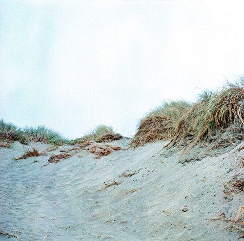 Koduckgirl Sand Beach No People Sand Dune Film Lubitel 166+ Ocean Beach San Francisco Square Day