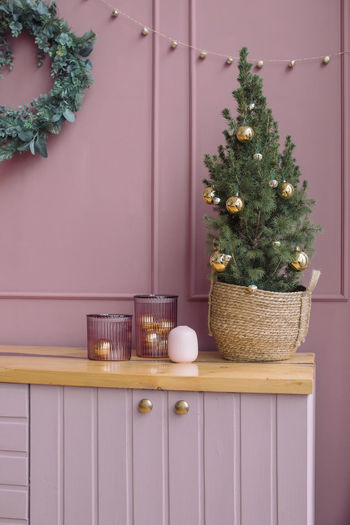 Potted plants on christmas tree at home