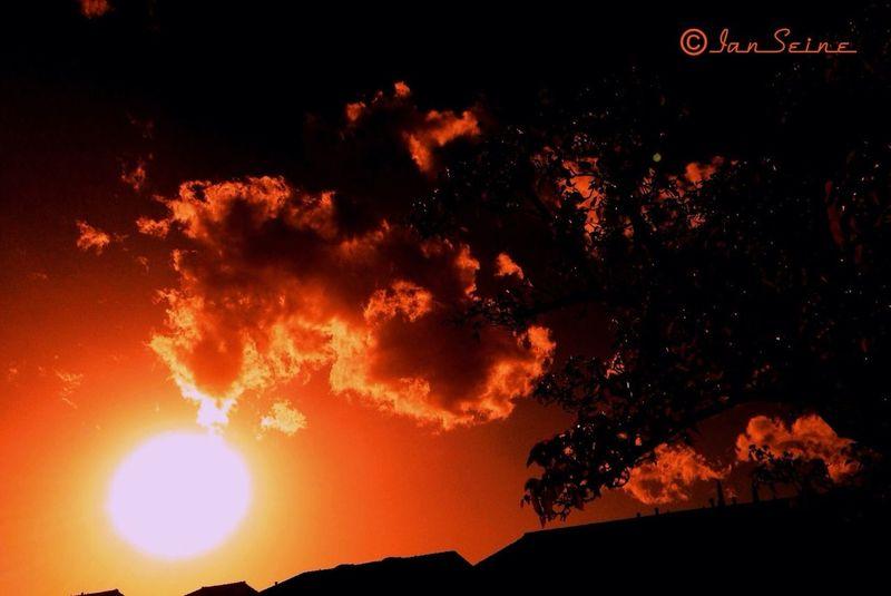 ☀Yesterday's Sunset☀ Silhouette #sunset #sun #clouds #skylovers #sky #nature #beautifulinnature #naturalbeauty #photography #landscape EyeEm Nature Lover EyeEm Best Shots