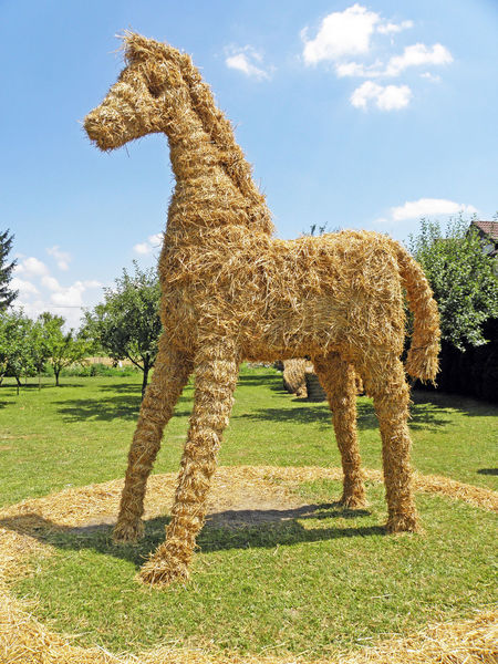 Harvest thanksgiving,Puscina,horse made of straw,2 Animal Beauty In Nature Cloud - Sky Countryside Croatia Day Eu Field Harvest Harvest Thanksgiving Horse Instalation Landscape Medimurje Nature Outdoors Puscine Sculpture Straw Summer Tranquility