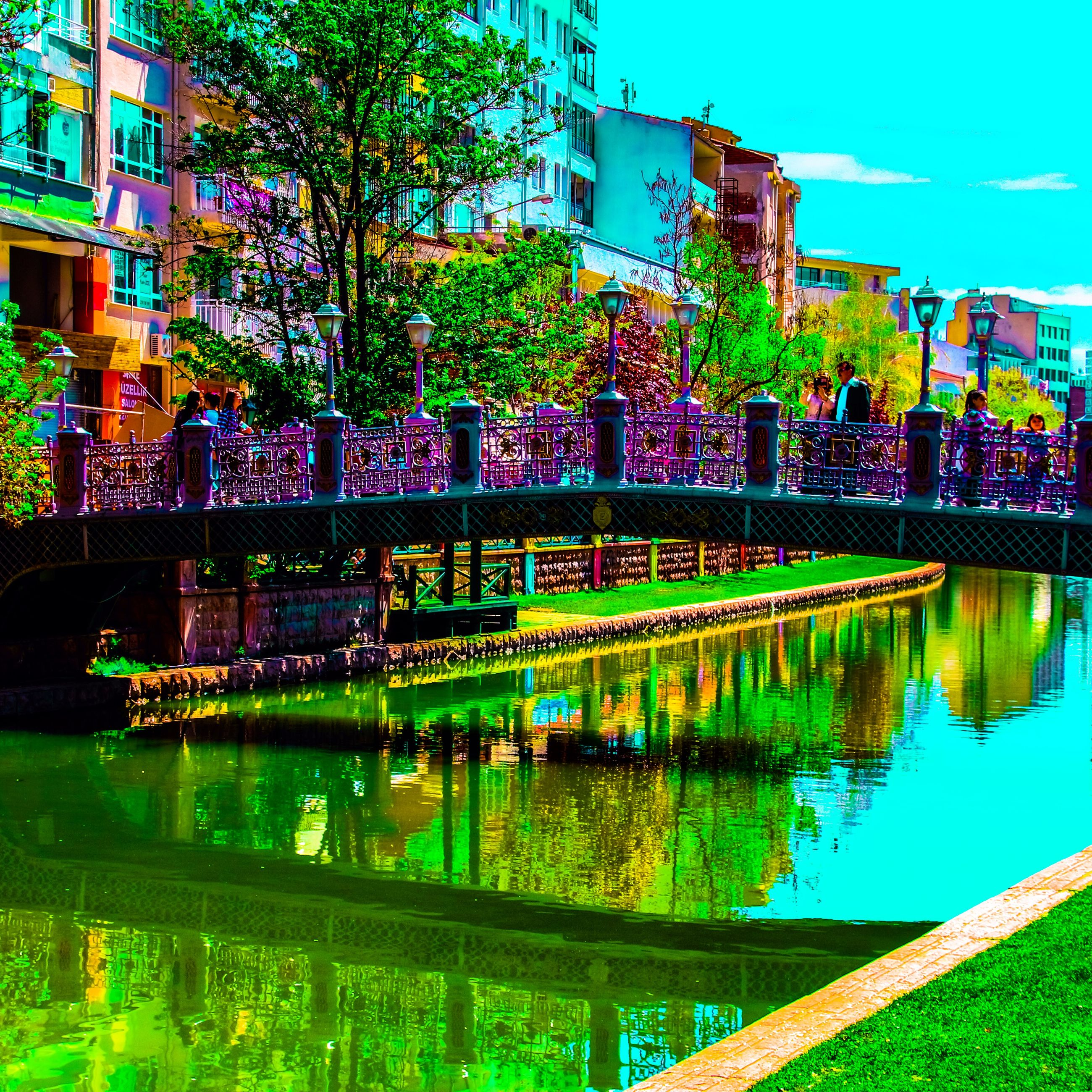 architecture, built structure, building exterior, water, reflection, tree, city, green color, growth, pond, blue, day, river, outdoors, plant, canal, building, incidental people, connection, no people