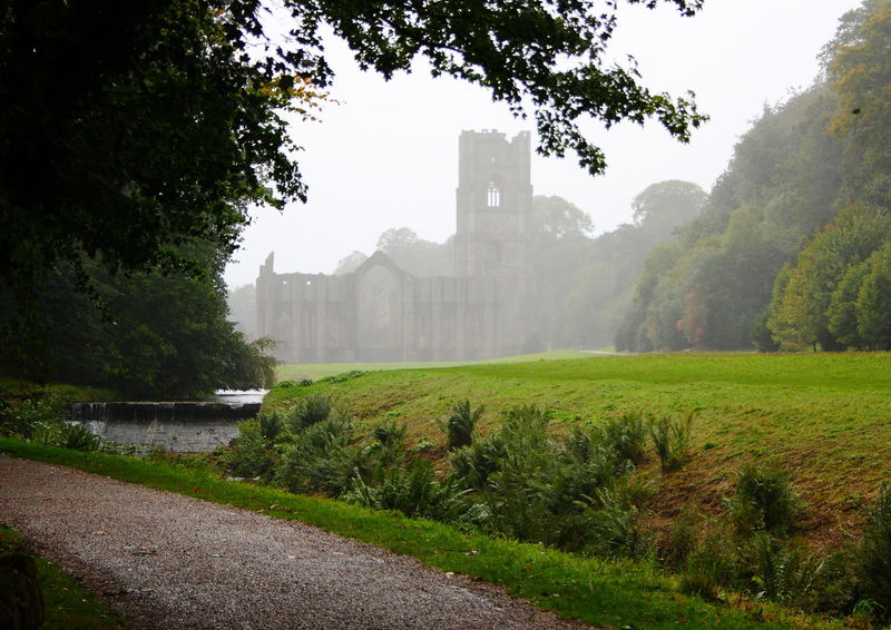 Fountains Abbey Abbey Abbey Ruins Arch Arches Architecture Atmospheric Built Structure Churches Cromwell  Early Morning Early Morning Light Fountain's Abbey Fountains Abbey Fountains Abbey Yorkshire Henry VIII Henry VIII Reformation History Religion Religious  Religious Architecture Scenery Shadows Tower Towers Yorkshire