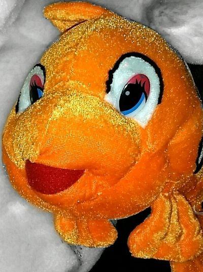 Hellooo :-) Clownfish Anemone Fish Bunt Colorful Fisch Fish Stuffed Toy Stuffedtoy Stuffedanimal Stofftier Taking Photos Beliebte Fotos I Love It Cute Stuffed Animal  I Like It Eyeem Photography Taking Pictures Hello World The Week On Eyem EyeEm Eyeemphotography EyeEm Gallery Eyeem Market Neon Life