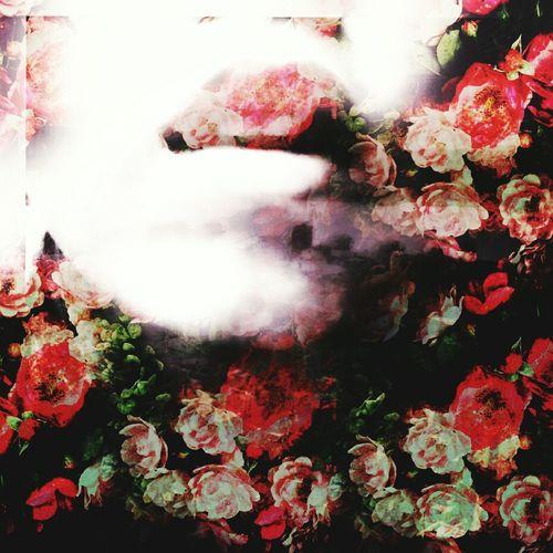 flowers dying for the happienss of other MyEdit Eyemphotography EyeEm Best Edits Hello World Beautiful Portrait Keepsmiling EyeEm Artisanssoul Lov Lovegod Okaybye