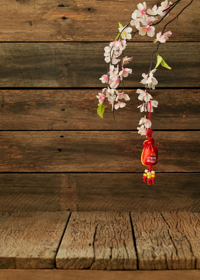 """Chinese new year 2019-2020 festival Happy Chinese new year or lunar new year. Text space images. (with the character """"fu"""" meaning fortune) 2019-2020 Wood Wooden Table Chinese Year New Background Red Festival Space Lunar Decoration Celebration Culture Asian  China Oriental Spring Food Traditional Gold Flower Blossom Holiday Prosperity ASIA Greeting Copy Lay Flat Plum Ornament Tradition Celebrate Fortune Packet Symbol Festive Happy Luck Envelope Good Pig Japanese  Happiness Rat Minimal Background Poster Wood - Material Plant Flowering Plant Freshness No People Nature Beauty In Nature Fragility Outdoors Close-up Vulnerability  Tree Day Growth Directly Above Springtime Flower Head Cherry Blossom Wood Grain"""