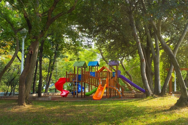 Plant Tree Park Playground Park - Man Made Space Nature Day Slide - Play Equipment Multi Colored Outdoors Grass Green Color Childhood Growth Tree Trunk Absence Trunk Outdoor Play Equipment Hanging Empty