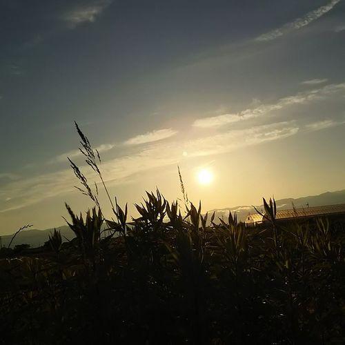 今日はストレス、プレッシャー、理不尽に振り回された日やったなぁ。 たまにはこういう日もある。 おつかれさまでした。 空 Sky イマソラ 夕陽 夕方 ダレカニミセタイソラ Team_jp_ Team_jp_sky Japan Instagood