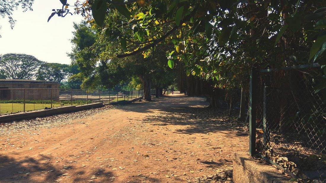 Tree Travel Destinations Outdoors History Hampi  Untravelled Road Beauty In Nature Green Background Paths Of Life Rural Scene India EyeEmNewHere
