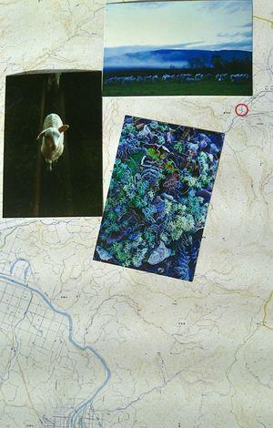☺ 友だちが村上春樹さんの本が好きでポストカードこうてみた!! 隣町が舞台でないかと?ぜんぜん知らなかった笑笑(*^^*)で友だち読んでいなかった笑笑笑笑(*^^*) 羊をめぐる冒険 美深町 仁宇布 Haruki Murakami 무라카미 하루키 北海道出身の写真家岡田敦