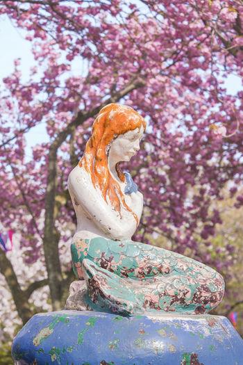 Close-up of statue on cherry blossom tree