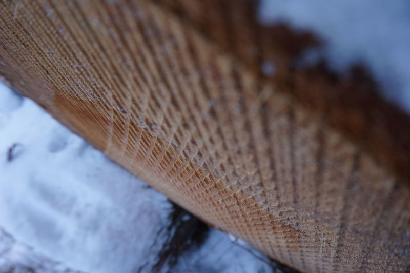 Close-up Cut Patterns Day No People Outdoors Snow Structure Tree Trunk Close Up