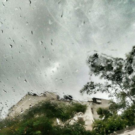 Gaza-Palestine Rain Rainy Days Rainy Day Raining Clouds And Sky Clouds
