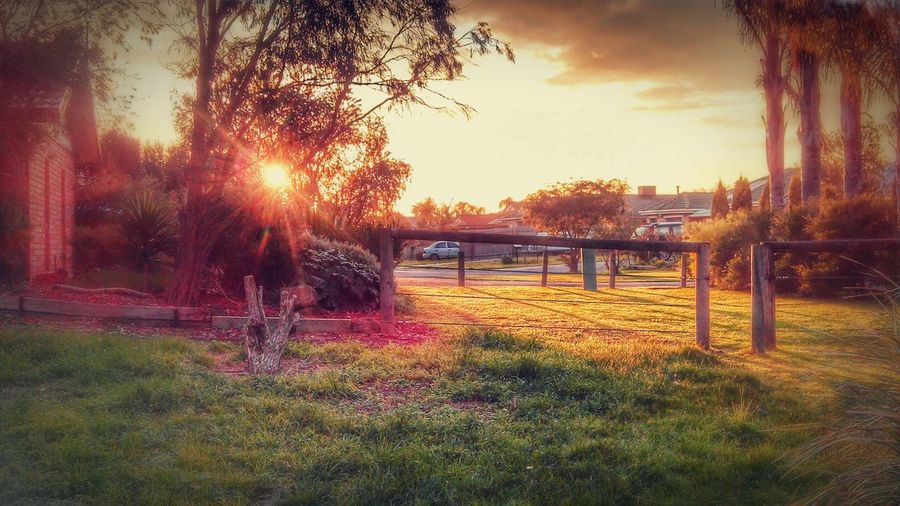 Sunrise in the hood Sunrise Sunrays