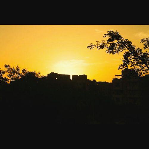 Silhouette Canon1100d Sunshine ☀