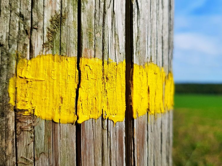 Yellow line painted on a wooden pole - French walking trail indicator Yellow Wood - Material No People Outdoors Close-up Painted Walking Trail Walkingaround Details And Colors Wooden Surface Cracked Paint Cracked Texture Scenics EyeEm Selects Eyee