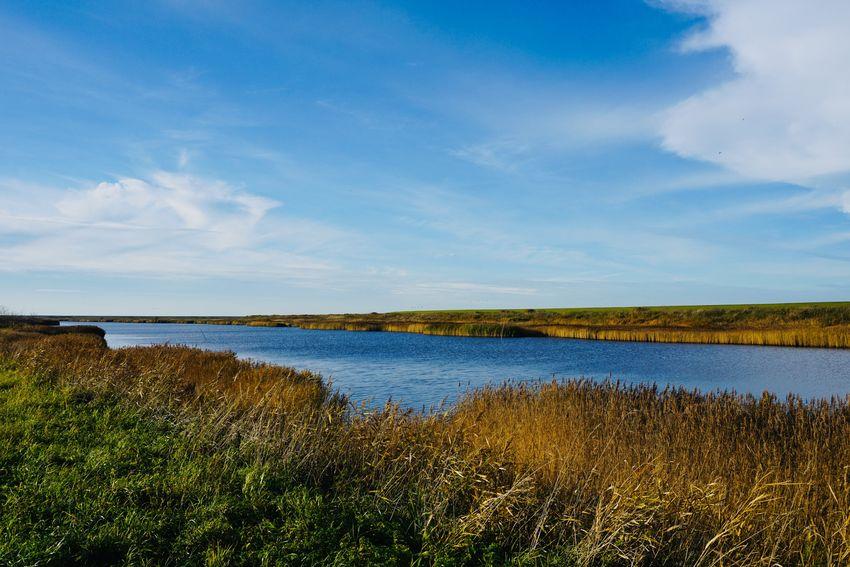 Sky Water Scenics - Nature Rural Scene