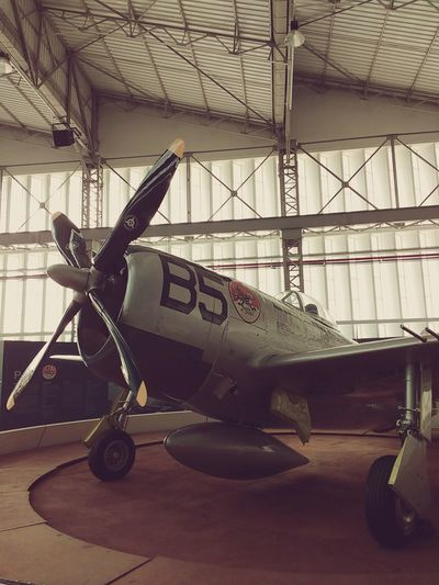 Thuderbolt Airplane Plane