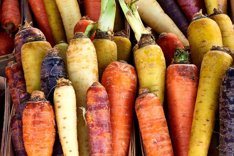 A Rainbow of Carrots Abundance Carrot Farmers Market Freshness Healthy Eating Healthy Food Multi Colored Rainbow Carrots Vegetable