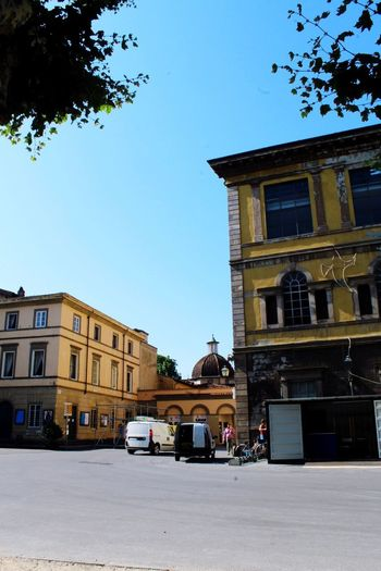 Architecture_collection Lucca Italy Lucca Italy Tourism Architecture Building Exterior Built Structure Building City Sky Street Motor Vehicle Transportation Sunlight Day Clear Sky Road Tree Plant Residential District