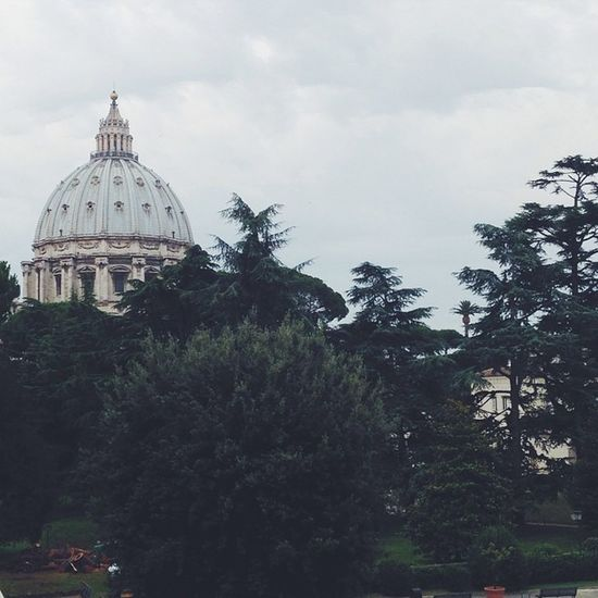Taking it in. Basilica View Awesome Stpeter culture italy roma vatican
