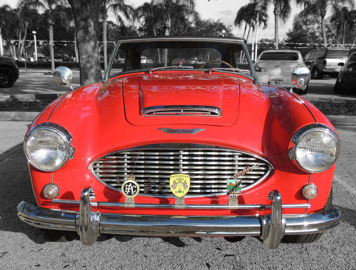 Classic Cars Austin Healey 3000 Austin Healey 3000 British Racing Car Car Close-up Day Land Vehicle Mode Of Transport Nature No People Outdoors Red Road Stationary Transportation Tree