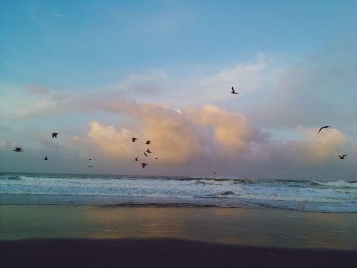 Morning sky Relaxing Beach Photography Enjoying Life