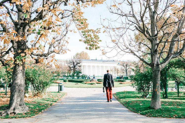 Rear View Of Man Walking On Street Amidst Trees