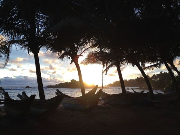 SriLanka Sri Lanka Mirissa Taking Photos Traveling In Sri Lanka Sunset Beautiful Nature Palm Trees Beach Ship
