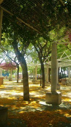 Parque  Junio