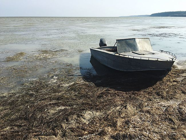 Boat Sea Horizon Over Water Nautical Vessel Moored Water Transportation Shore Tranquil Scene Tranquility Nature Outdoors Calm Seascape Scenics Day Solitude Summer No People Beauty In Nature