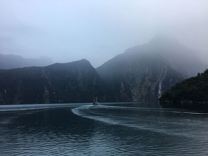Milford Sound Te Anau Trip Beauty In Nature Day Fog Journey Lake Mountain Mountain Range Nature Nautical Vessel Newzealand One Person Outdoors People Real People Scenics Sky Tranquil Scene Tranquility Travel Destinations Tree Water Waterfront