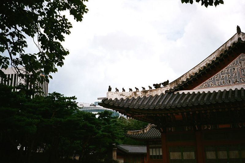 Agfavista400 Fujica Deoksu Palace Palace Deoksugung Palace 덕수궁(DeokSuGung) South Korea Korea Korean Traditional Architecture Architecture Low Angle View Building Exterior Tree Built Structure Sky Day No People Outdoors Roof Cloud - Sky
