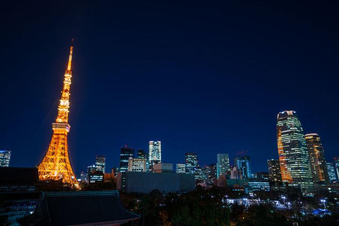 Tokyo Tower Illumination Japan Lighting Up The Night... Magic Hour Minatoku Night Nightphotography Nightshot Shibakoen Sunset Temple Tokyo Night Tokyo Tower Tokyo,Japan Tower Zojoji Zojoji Temple