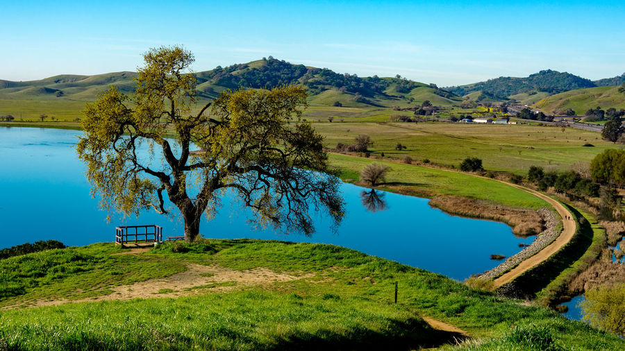 Panoramic view of Lagoon Valley Park in Vacaville, California, USA, featuring oak tree and a lake and pedestrial walkway around it, from above Lagoon Valley Park Vacaville California USA Oak Oak Tree Public Park Lagoon Chaparral Yolo County