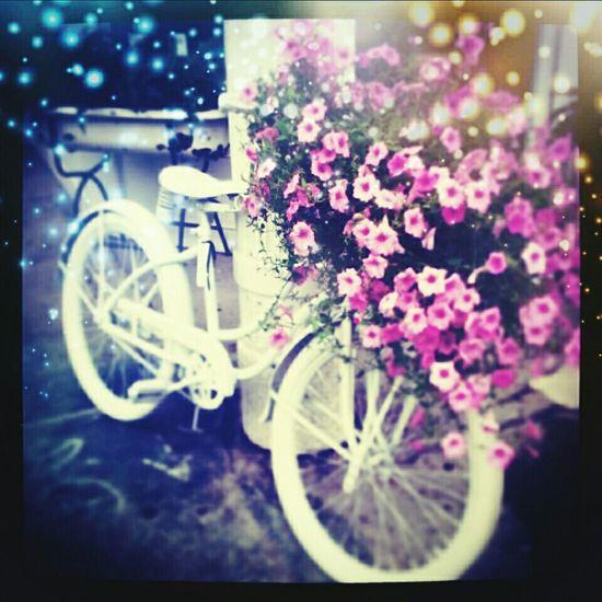 Walking Around Vintage❤ vintage bicycles