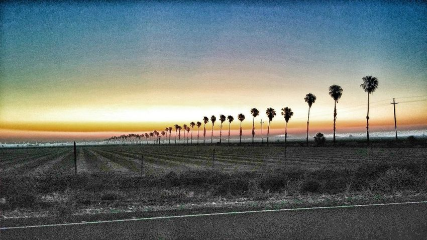 Hanging Out Check This Out Taking Photos Sunrise Filters Good Morning Norcal Sunrise