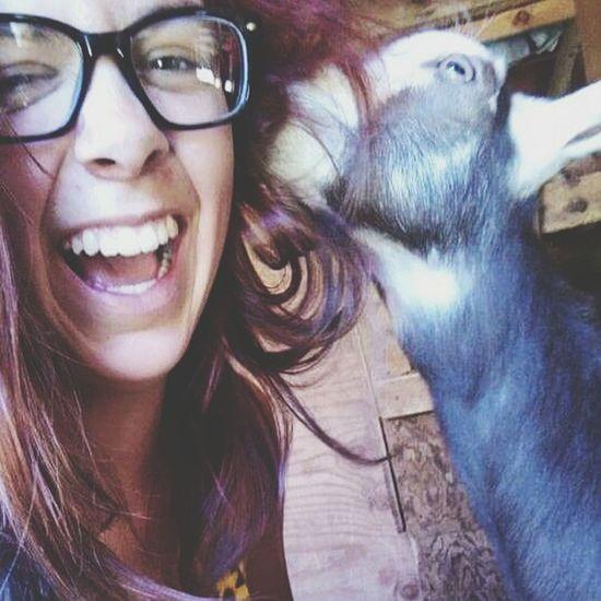 Goat In My Ear! Stehekin