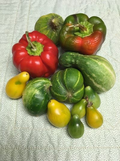 Cucumber Food Healthy Eating Food And Drink Wellbeing Fruit Freshness Green Color Vegetable Still Life Indoors  High Angle View Tomato Raw Food Red Pepper No People Close-up Table Choice Variation