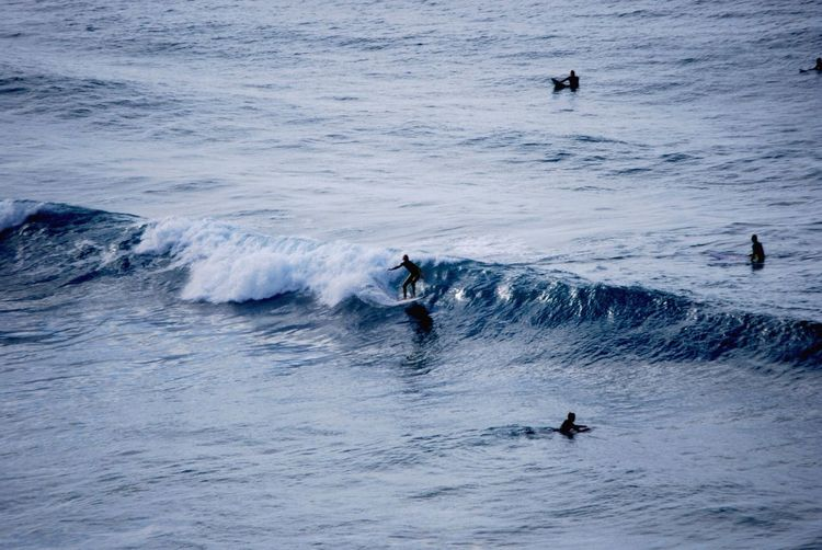 High angle view of silhouette people surfing in sea