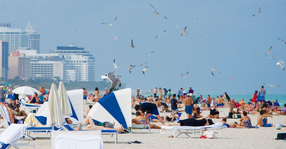 People Relaxing At Beach With Birds Flying Against Clear Sky
