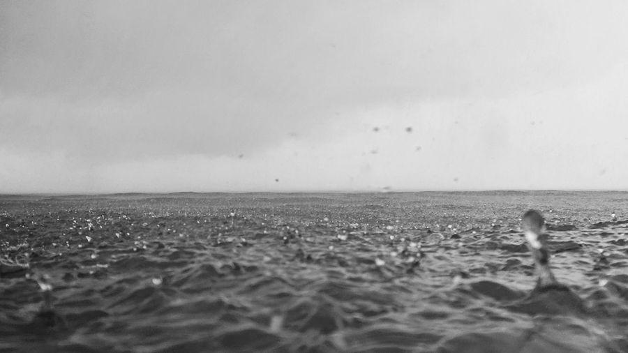 rain - bw