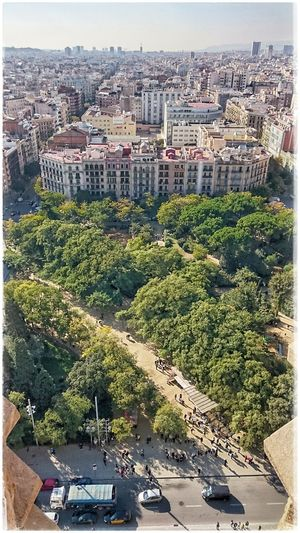Hello Barcelona über den Dächern der Stadt Barcelonalove Sacrada Familia Traveldestination Travel Destination
